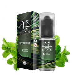 E-liquide Chewing-gum menthe SPEARMINT - 4YOU